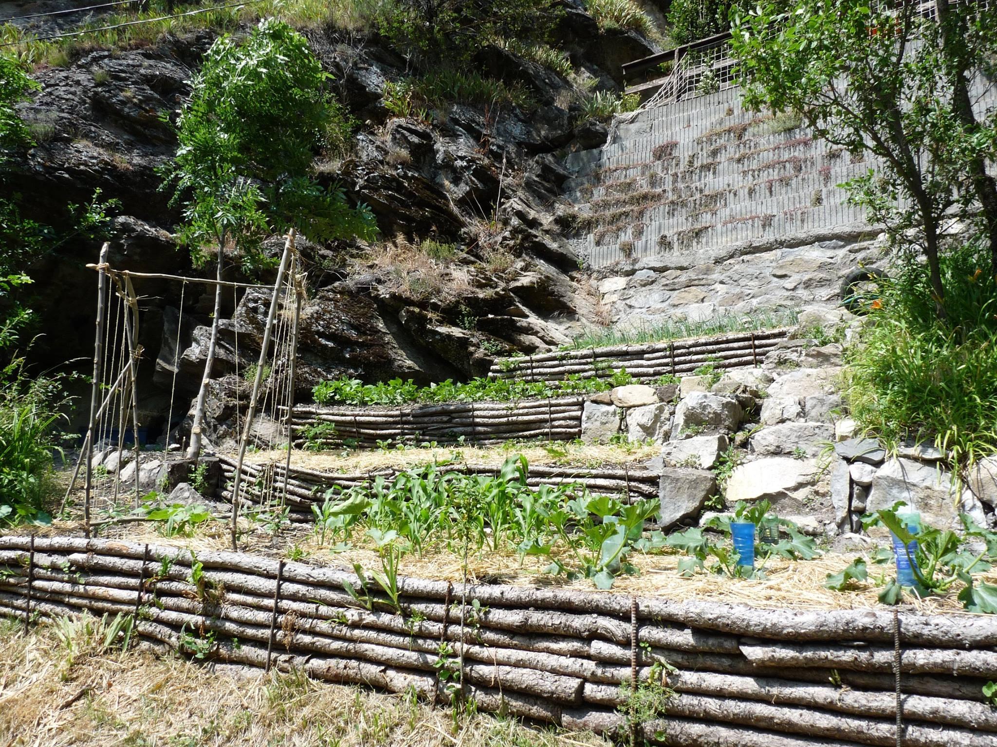installation pour haricots grimpants au gite de méolans proche de barcelonnette